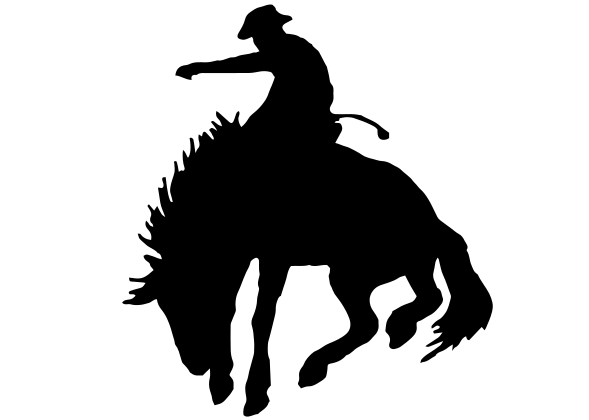 Cowboy Rodeo Decal