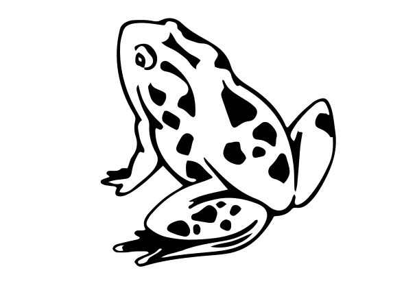 Frog Decal 2