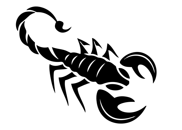 Scorpion Decal 4