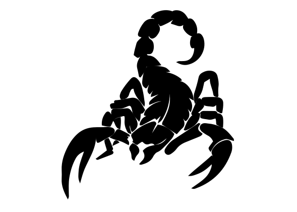 Scorpion Decal 6