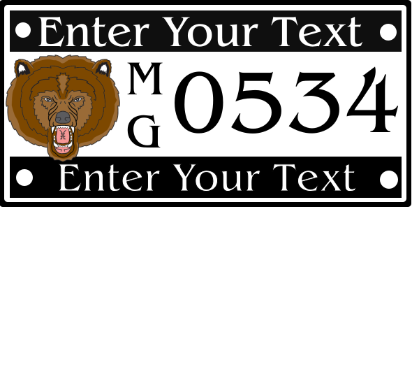 License plates 6x12 inches