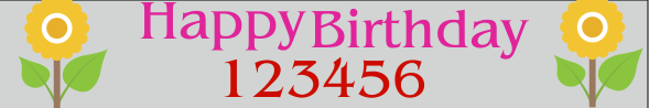 Birthday Banner 24x144 inches